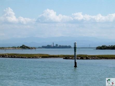 isola di barbana in lontananza