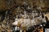 Grotta Gigante, la grotta da Guinnes