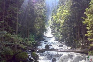 Val Genova, la valle delle cascate