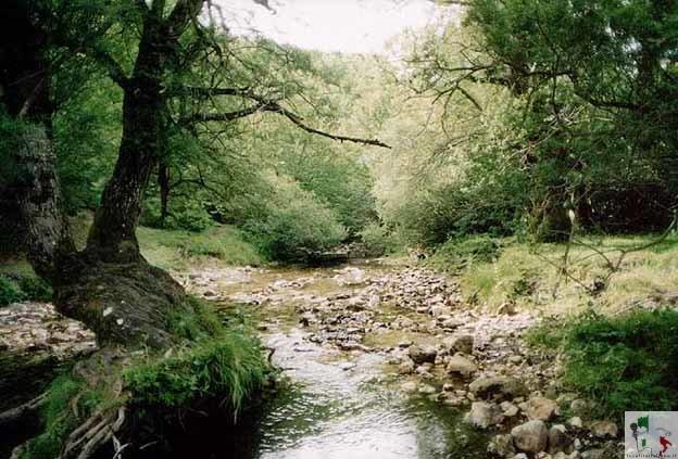 area protetta oasi zegna