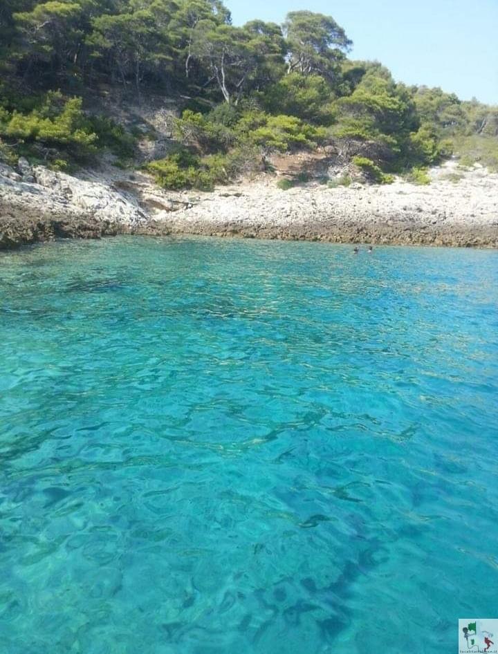 isole-tremiti-mare