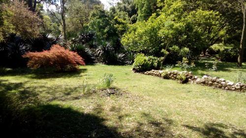 giardini di ninfa - piante