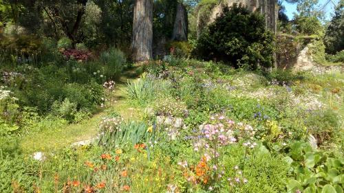 giardini di ninfa - fiori