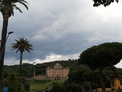 Villa tuscolana Frascati