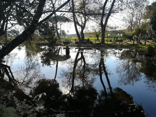 laghetto parco degli acquedotti