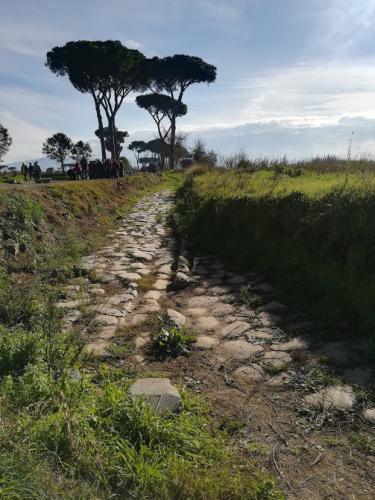 via latina parco acquedotti